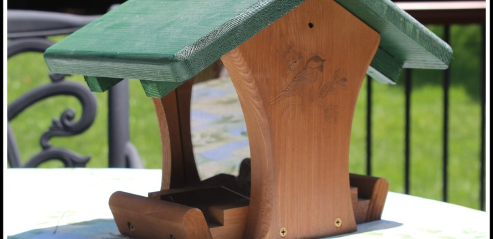 The Bird Feeder: How I Made My Desires Known to The Universe