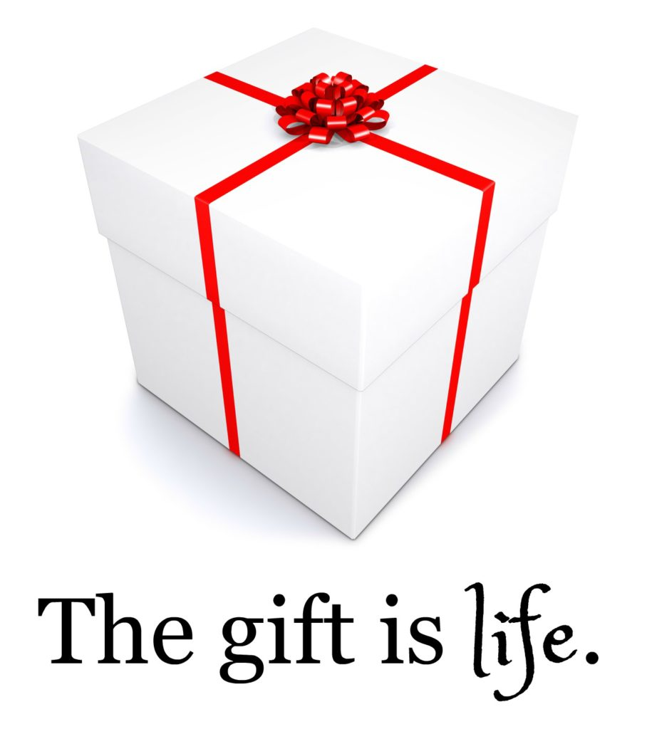 gift-is-life