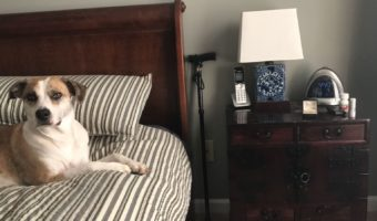 Midlife and The Cane at My Bedside